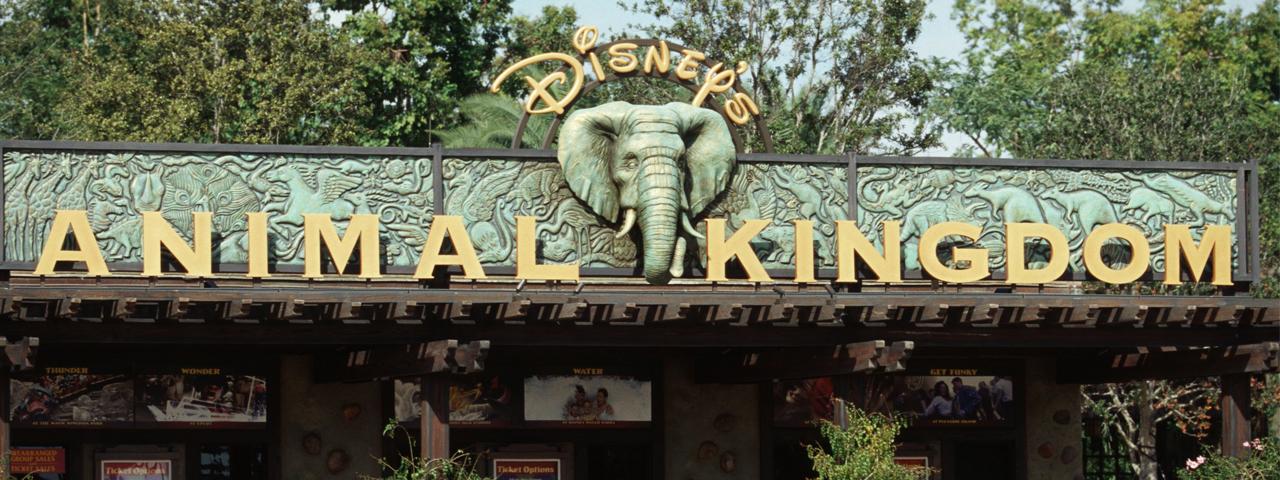DisNeato Podcast Episode 3: Celebrating 20 Years of Animal Kingdom